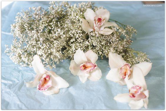 #ramo #novia #prensado #orquídea #paniculata #taller #flor