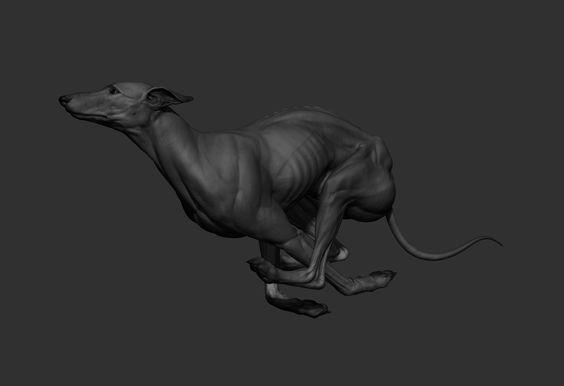 ArtStation - Greyhound, Krystal Sae Eua