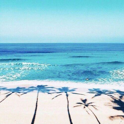 Image Via We Heart It Beach Palms Photography Sea