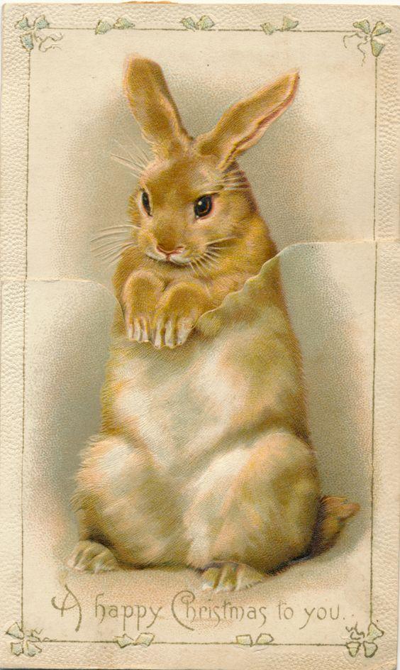 Victorian Christmas card rabbit