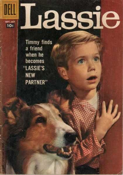 Timmy - Dog - Blue Eyes - Checkered Shirt - Blonde HairI don't remember the books, just the TV show.  Dad encouraged us to watch this - he must have liked it too!: