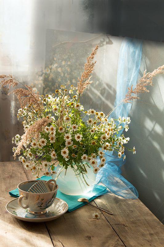 Still Life Photography Ромашковое утро… © Нади(Надежда Кузнецова):