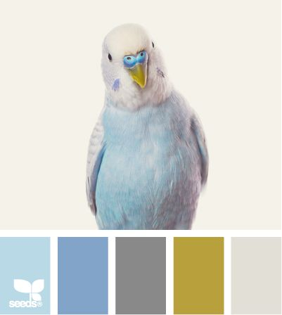 Use this to site to find the right color palette for anything - from painting a room to creating a scrapbook layout to getting lost in all the beautiful colors.