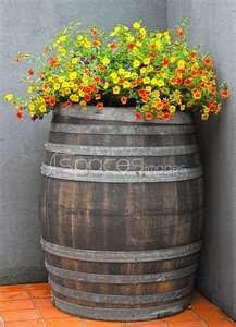Wine barrel planter.