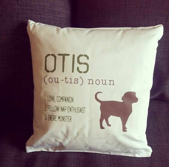 """Soooo cute! You can personalize this """"Definition of My Dog"""" pillow with all your own info so it matched your pet! LOVE this! #Pillow #Dog #PetGift"""