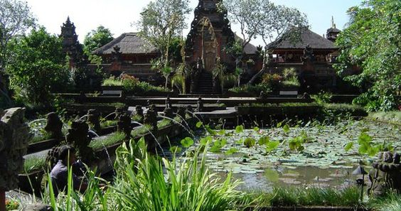 Священный лес обезьян на острове Бали: