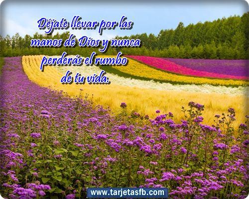 tarjetas+lindas+con+mensaje+de+Jesús+para+facebook.png (500×400)