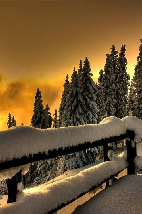 puesta de sol de invierno