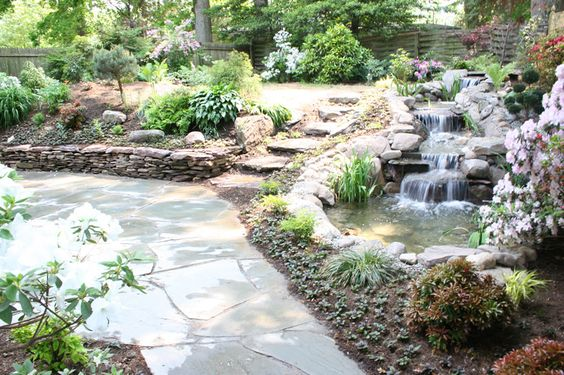 Natural koi pond with waterfalls plantings flagstone for Natural koi pond design