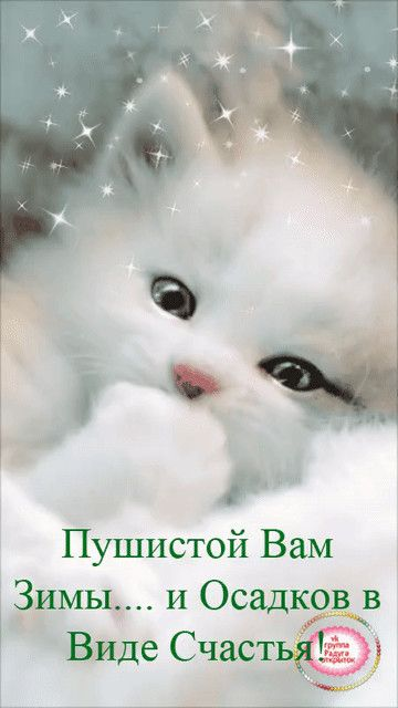 Odnoklassniki Novogodnie Citaty Dobroe Utro Samye Smeshnye Kartinki