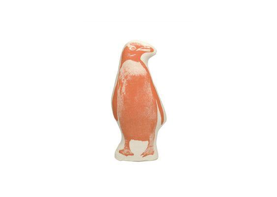 Fauna Pico Penguin