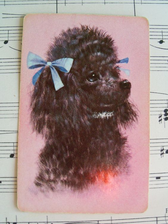 5 Vintage Playing Cards, Dog, Poodle, Puppy