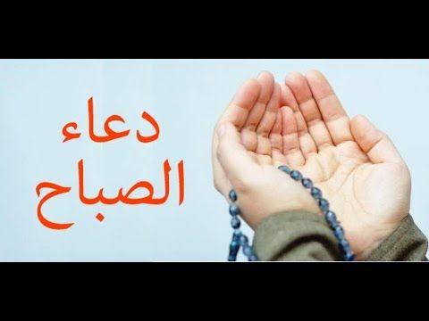 صور صباح الخير واجمل عبارات صباحية للأحبه والأصدقاء موقع مصري Beautiful Morning Messages Good Morning Greetings Morning Greeting