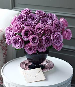 cool water roses