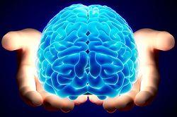 Voedingsstoffen in dierlijke vetten, onmisbaar voor je brein.