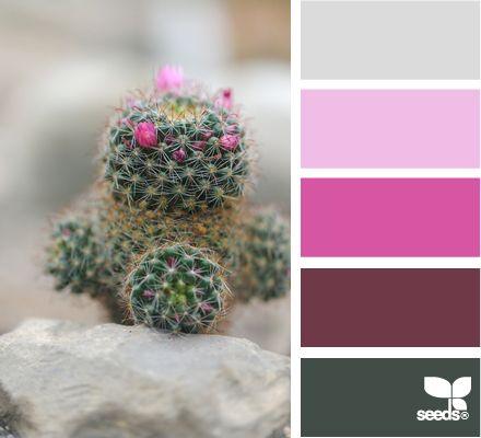 cactus tones