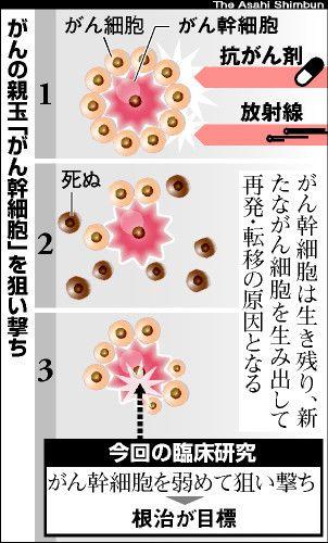 図:がんの親玉「がん幹細胞」を狙い撃ち