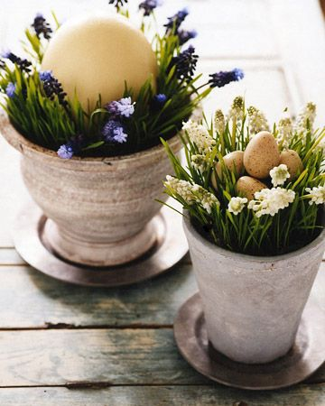 pretty spring flowers in pale terracotta pots with natural eggs