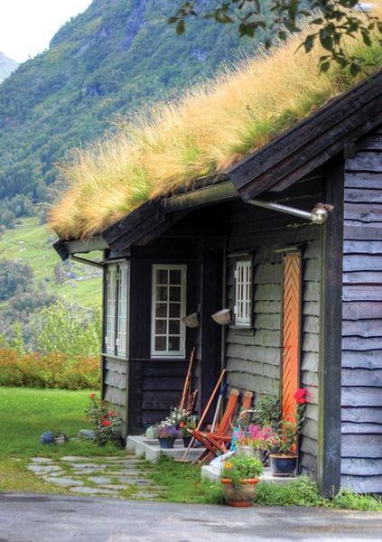 Grass roof cabin