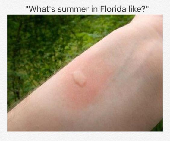 What's summer in Florida like? http://www.wfpblogs.com/category/florida-memes/