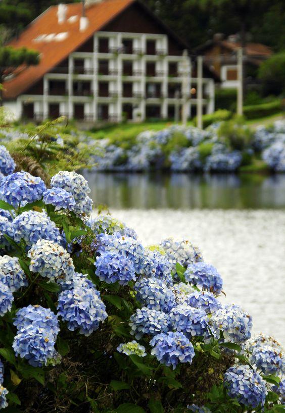 Hotel em Gramado, no Sul do Brasil, onde as Hortênsias encantam nossos olhos