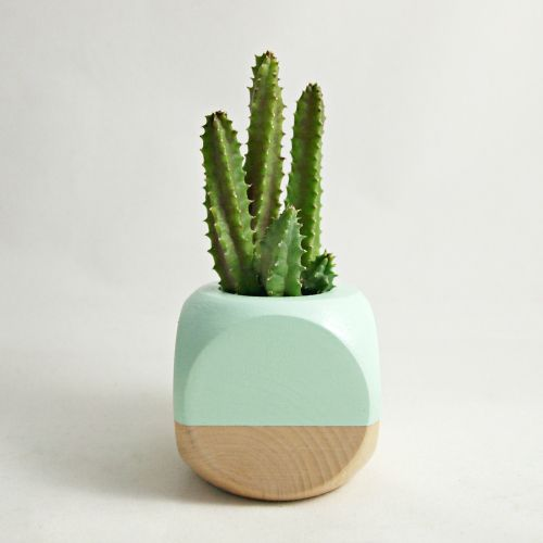 Mint wood geometric succulent planter this hand painted for Wooden cactus planter
