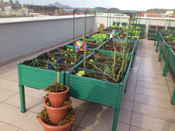 Huertos urbanos en san ignacio bilbao azotea de - Invernadero casero terraza ...