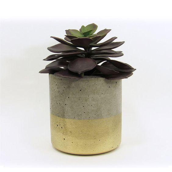 Succulent planters, Concrete planters and Succulents