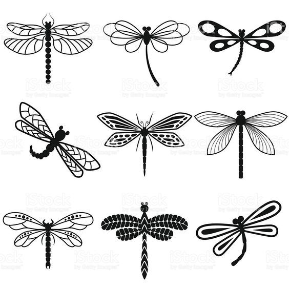 Dragonflies Black Silhouettes On White Background Royalty Free Stock Vector Art Dragonfly Drawing Dragonfly Art Dragonfly Clipart