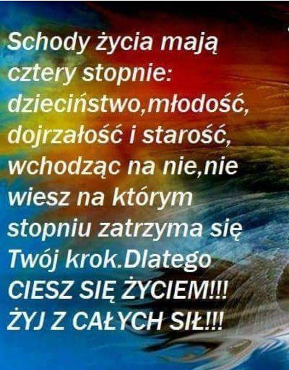 Pozytywne Cytaty Image By Kasia Sokolowska On Ludzie Lubia Mysli Czytac Cytaty Zyciowe Pozytywne Myslenie