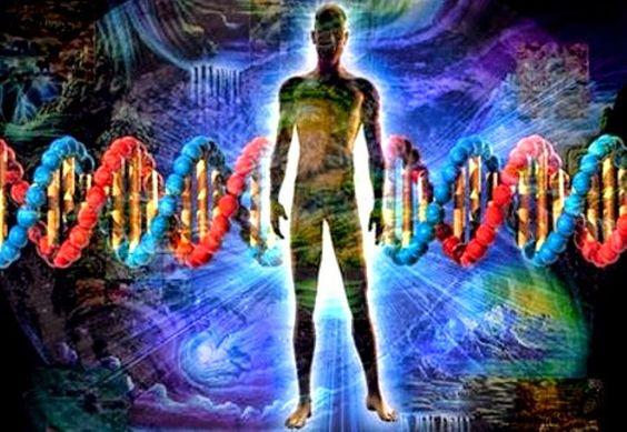 Abundancia, Amor y Plenitud : TÉCNICAS PARA MEJORAR EL ADN, ENTREVISTA AL DR. TO...: