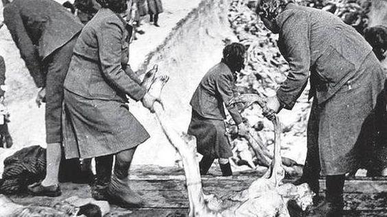 Mujeres nazis lanzando los cuerpos judíos al fondo con brutalidad