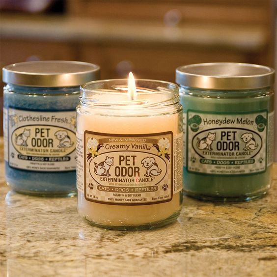 Pet Odor Exterminator Candles - These are the BEST candles ever...with or without pets they make your whole house smell fabulous!: