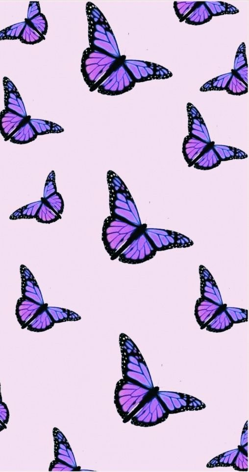 Don T Forget To Follow My Main Vsco In The Bio For A Repost Teenfunfacts Butterfly Wallpaper Iphone Butterfly Wallpaper Purple Butterfly Wallpaper