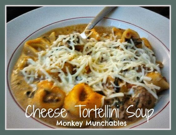 ... tortellini cheese tortellini soup cheese tortellini monkey cold day