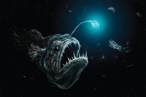 Deep Sea Anglerfish Predation Deep Sea Fish And Deep Sea Creatures - Anglerfish chair with a big lamp
