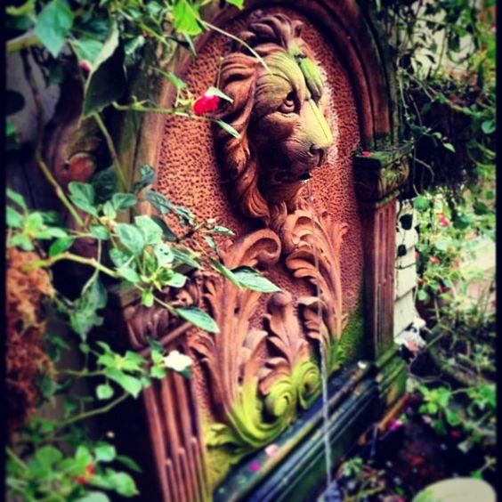In SanFrancisco a few months ago.           #SanFrancisco #Love it! #lion #fountain #garden #homedecor #interiordesign #design #decor #home