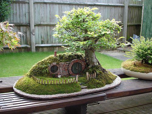 The best of both worlds - miniature garden with Bonsai