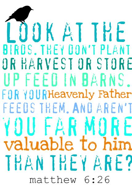 Image result for don't worry god feeds the bird