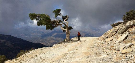 Mayo es el mes de las maratones en Creta - http://www.absolutgrecia.com/mayo-es-el-mes-de-las-maratones-en-creta/