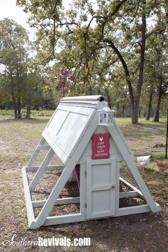 Cute chicken coop will have one one day animals for Cute chicken coop ideas