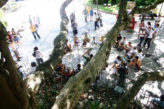 """Praça XV – """"Ilha da velha figueira, onde em tarde fagueira..."""" (Zininho)"""