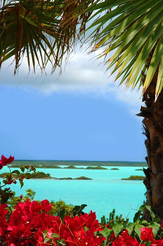 グアムの海とブーケンビリア