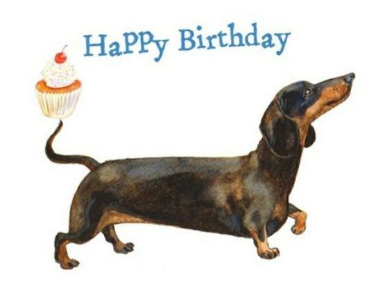 Pin By Wendy Avina On Dachshunds Friends Happy Birthday