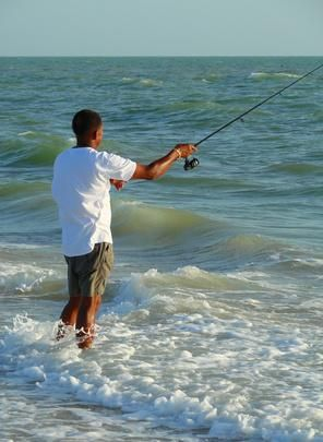 Bait to use for surf fishing pinterest surf the o for Surf fishing gulf shores
