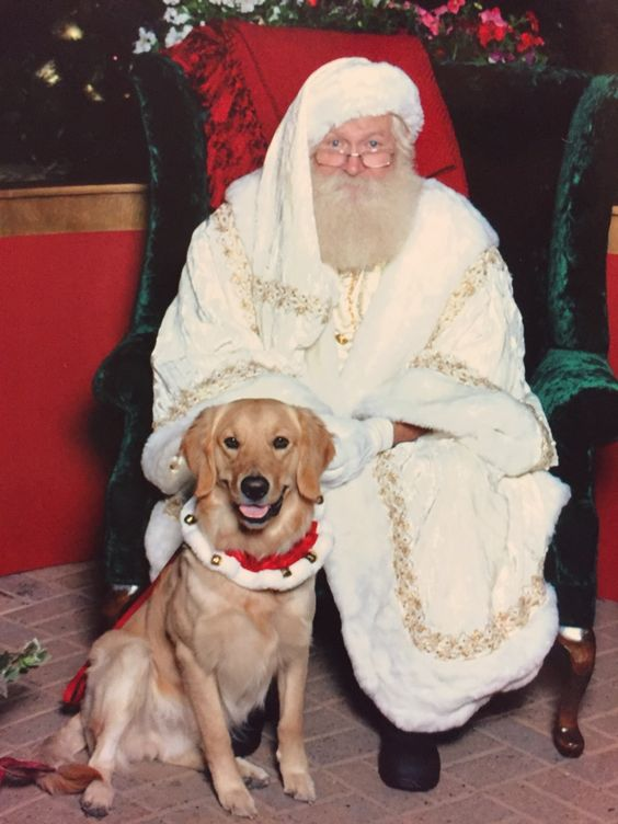 Happy holidays from Santa and Hal! http://ift.tt/2ghfQUX