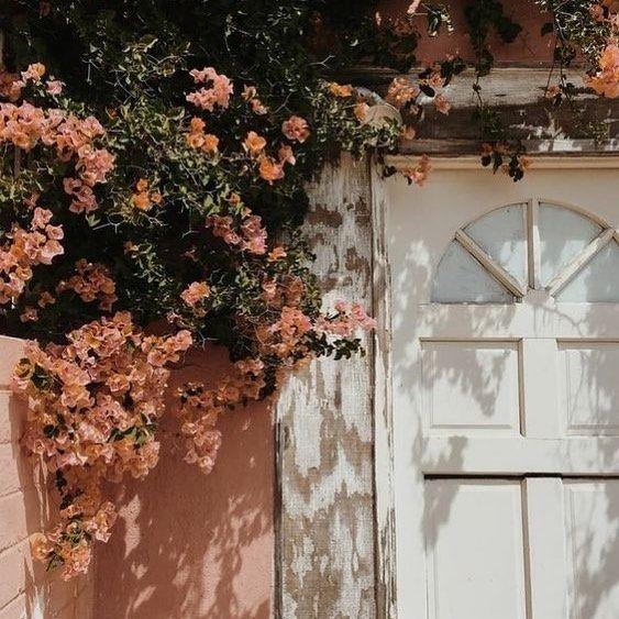 Vintage Aesthetic Warm Pink Orange Green White Cream Flowers Spring Summer Vibes Life Vintage Ae Flower Aesthetic Flower Garden Peach Aesthetic