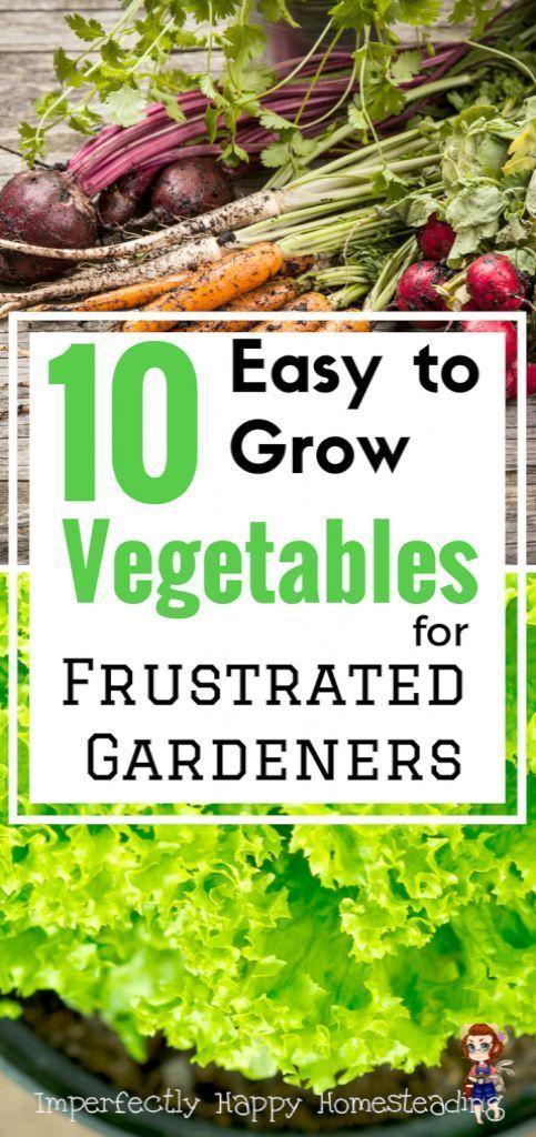 Garten Tipps In Hindi Uber Garten Tipps Fur Den Anbau Von Gemuse Garten T Anbau Den Easy Vegetables To Grow Growing Vegetables Planting Vegetables