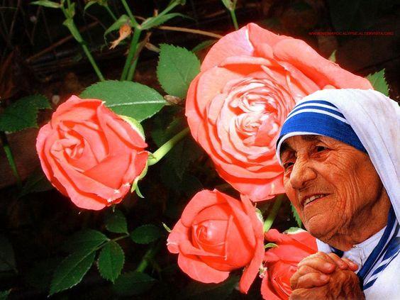 frases de teresa de calcuta sobre la vida   ... _sacri_sacred_mother_teresa_madre_teresa_di_calcutta_rose_1280.jpg: