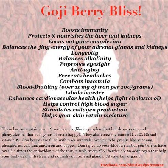 Goji Berry Bliss